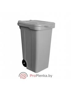Контейнер для мусора 120 л (БЗПИ)